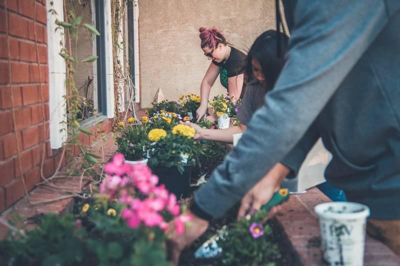 Imagen para Posteo de Blog: ¡Aprende a tener un alojamiento sustentable!